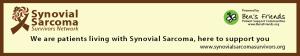 SynoSarHeadv0101